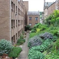 Corn Mill Court