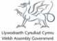 Welsh Assembly Government information